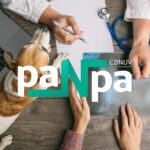 paNpa – Programa de Aprimoramento em Nefrologia de Pequenos Animais